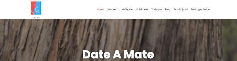 date-a-mate website